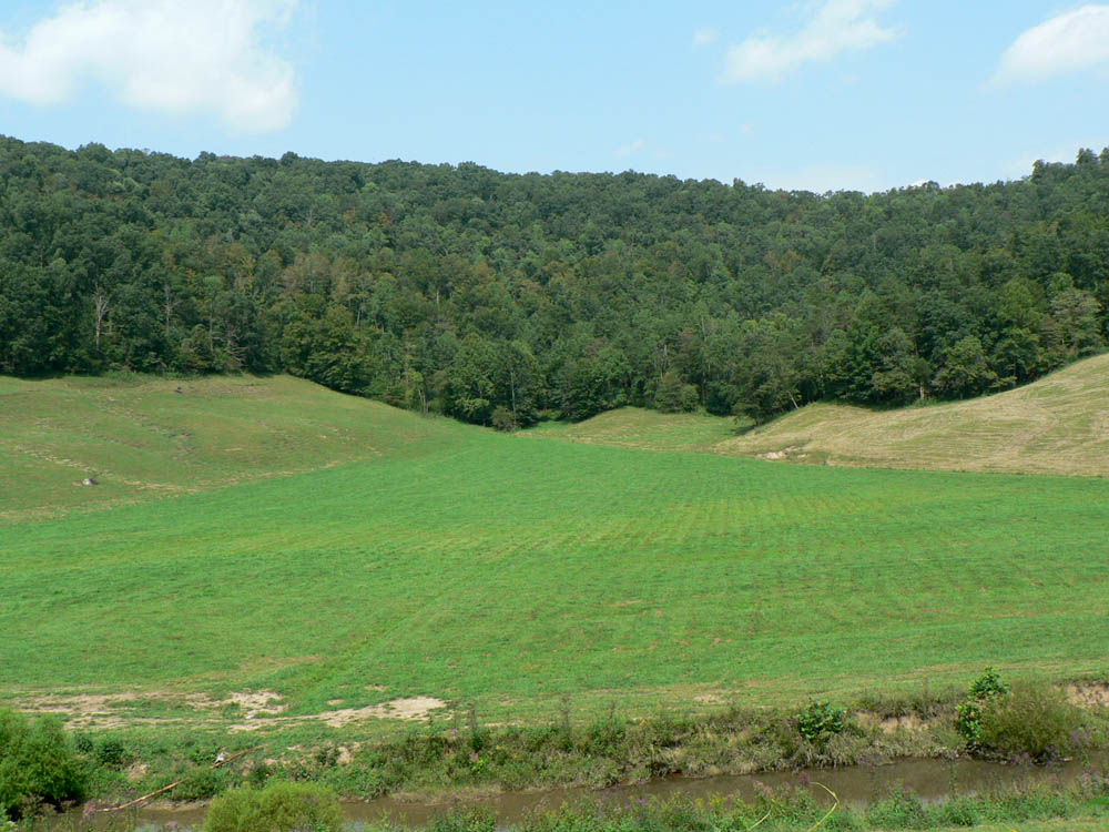 Kentucky Farms Sale Farm Land Acreage For Sale In
