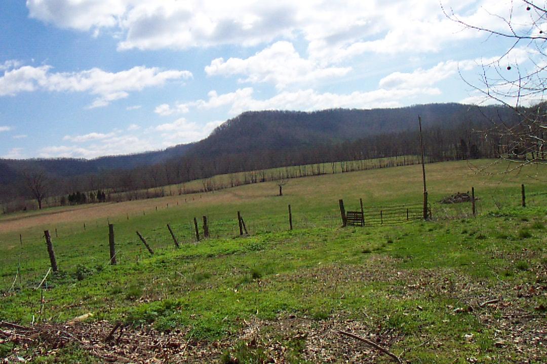 Farms Sale  Farm land ...